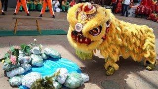 2013 Lion Dance Competition 梳邦工商联谊会醒狮团 2013年傳統舞獅比賽