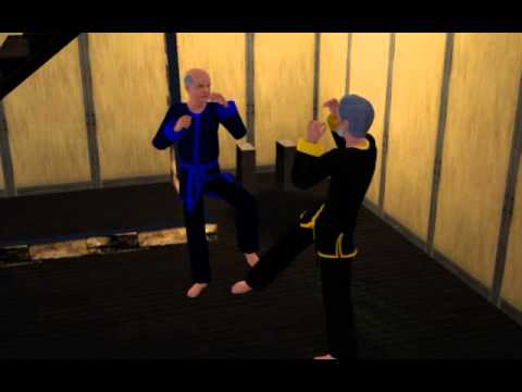 Sims 3 World Adventures: Martial Arts