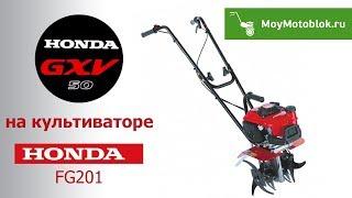 видео Мотокультиватор Honda: бензиновый культиватор Honda FG110 DE