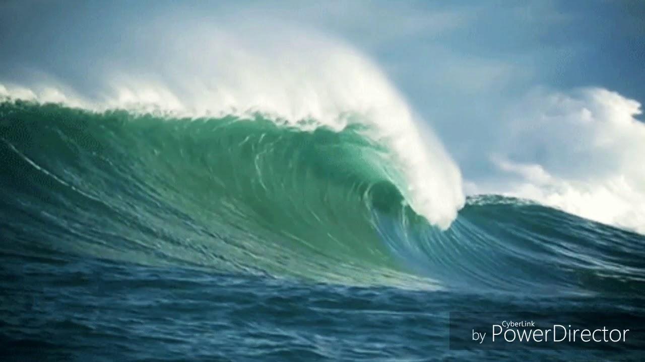 океан здоровья картинки живые невероятно