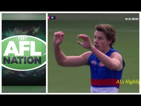 Western Bulldogs Goals | 2019 Round 23 Vs Adelaide (AFL Nation Commentary)