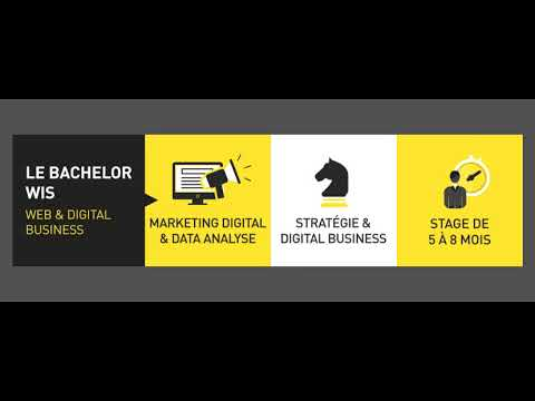 WIS - Master Expertise Digital Business