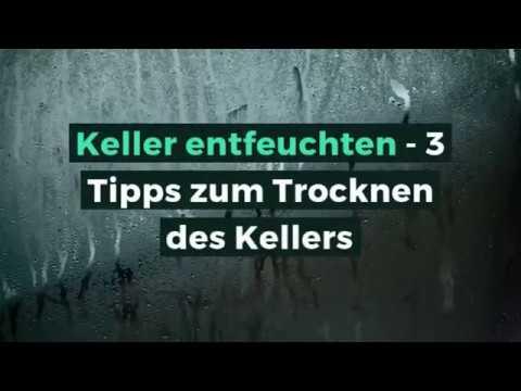 Keller Entfeuchten 3 Tipps Zum Trocknen Des Kellers Youtube