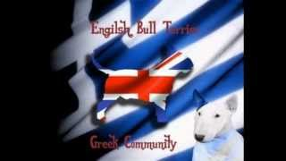 English Bull Terrier Greek Community Our Philosophy