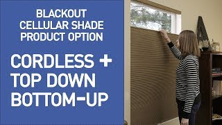 Cellular Shades w/ Cordless Top Down Bottom Up Lift Demo