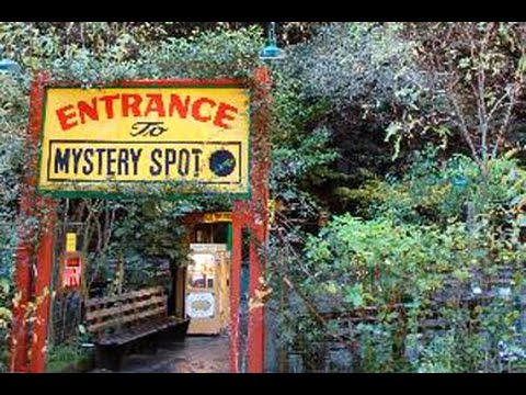 Experiencing The Mystery Spot Santa Cruz