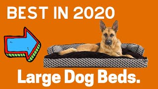 ✅TOP 5:best dog beds for large dogs|best in 2020.😍😍