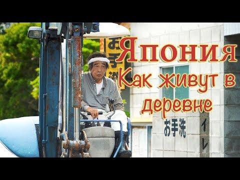 видео: Япония: Как живут в японской деревне? (2018)