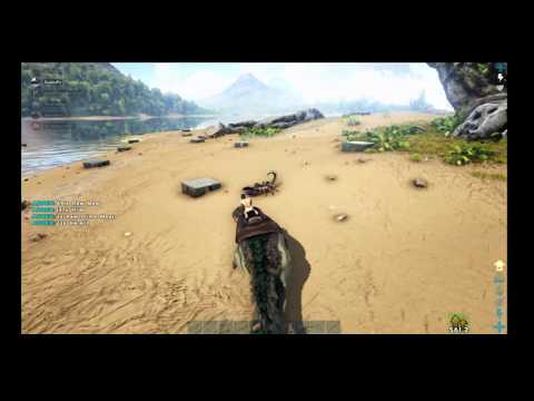 Ark Official Server: Day 1