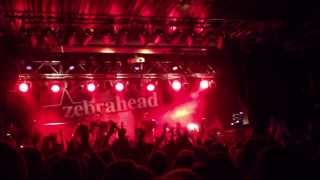 Zebrahead - I'm Just Here For The Free Beer (Munich, Backstage 2013)