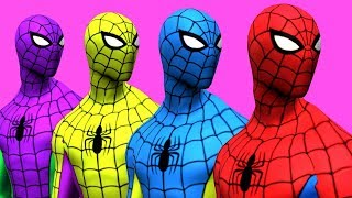 - Colors for Children to Learn with Spiderman Surprise Toys Animals Learn Colours for Kids