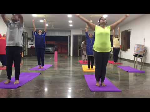 power flow sun salutation with various asanas yoga poses