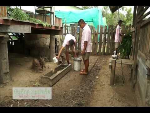 เทคนิคการขยายเกษตรเข้าสู่ชุมชน