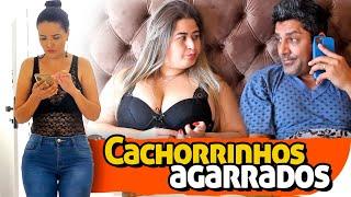 CACHORRINHOS AGARRADOS - PARAFUSO SOLTO
