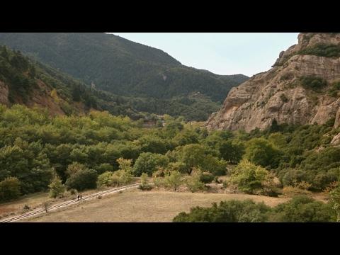 The Alpacas - These Train Tracks
