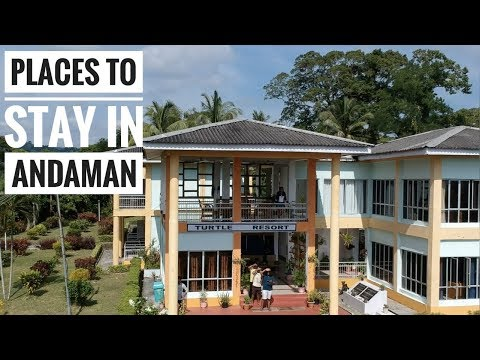 Places To Stay In Andaman | 5 Stay Reviews In 1 Video | Amazing Andaman |