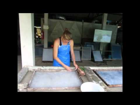 Mulberry Paper Making, Hq Paper, Chiang Mai