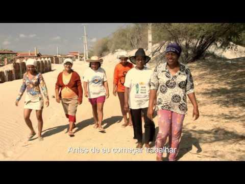 Gente da Maré: Melhorando as condições de vida das marisqueiras do Nordeste