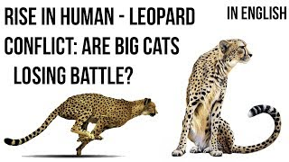 Decoding patterns of Leopard Human conflicts, Measures to avoid Wild Animal attacks on Humans