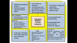 Alpha Blockers..[Mind Map]