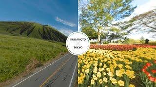 昭和纪念公园-东京×阿苏火山-熊本