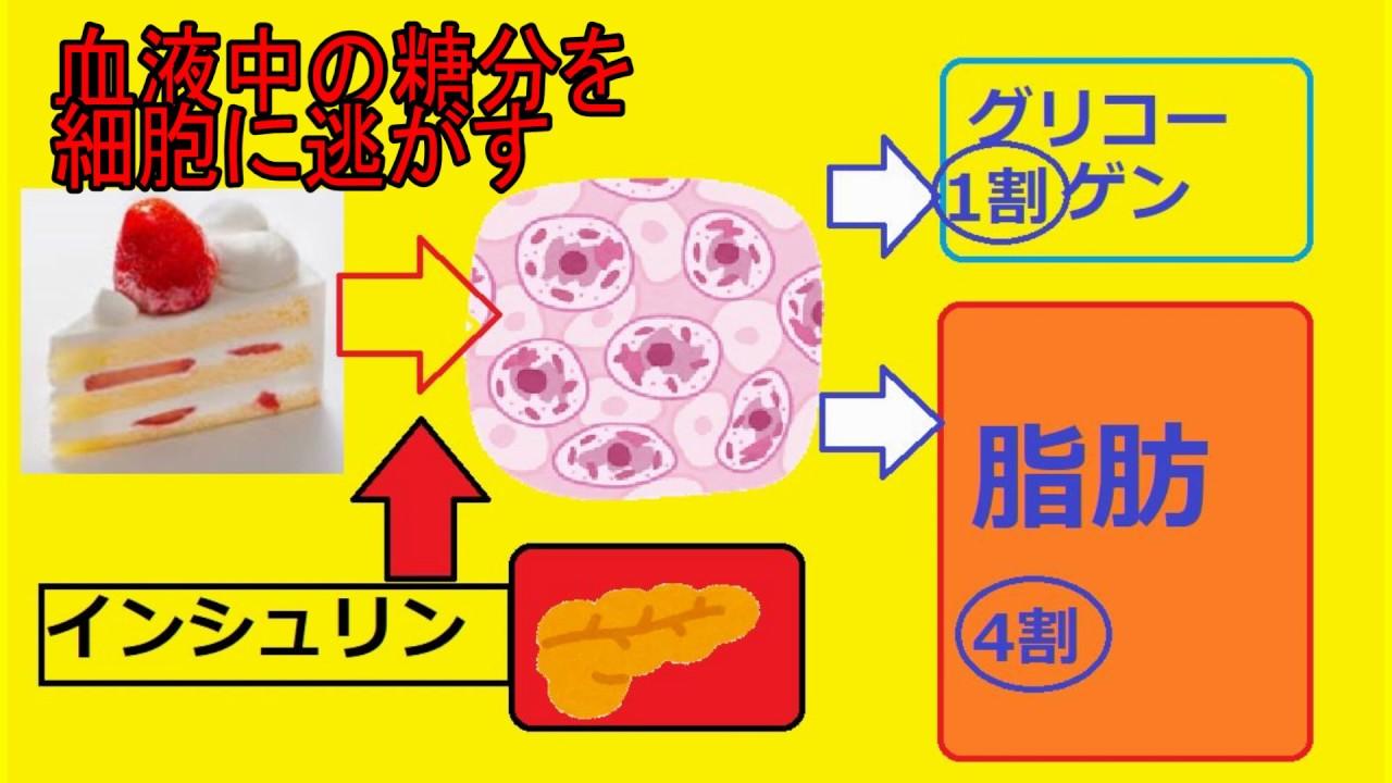 【健康雑學】25 糖尿病で筋肉痛?白砂糖の恐怖⑥血糖値が3倍も ...