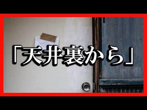 【一人暮らしの怖い話】「天井裏から」2ちゃんねるの奇妙な話【邪悪な予感】