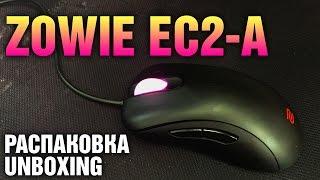 zowie EC2-A Распаковка и первичный обзор / Unboxing and first impressions