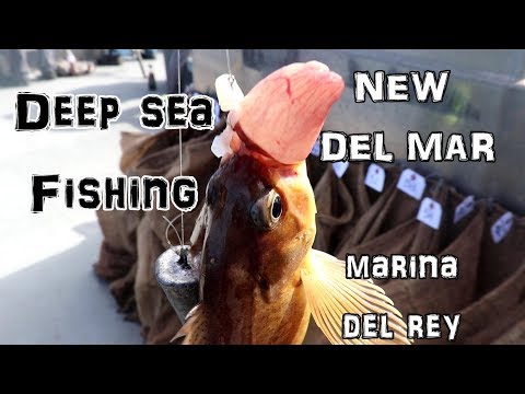 Marina Del Rey // Our Deep Sea Fishing Adventure On The NEW DEL MAR