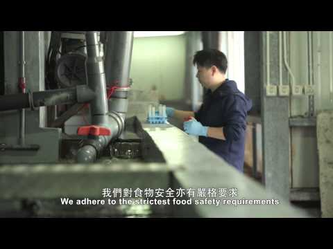 Company Introduction - Aquaculture Technologies Asia Limited - Oasis Giant Grouper