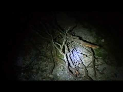 Urban | Haunted ~ Explorations - Abandoned Cement/Mining Wor