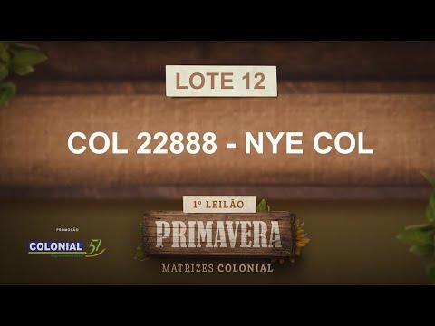 LOTE 12   COL 22888