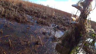 СКОЛЬКО ТАК ГИБНЕТ РЫБЫ рыбалка на самоловку ловля сазана и карася