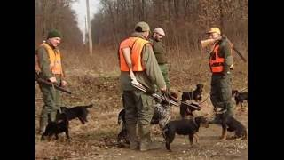 Repeat youtube video Deutscher Jagdterrier(hunting with my friends)
