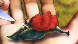 Притча про бабочку