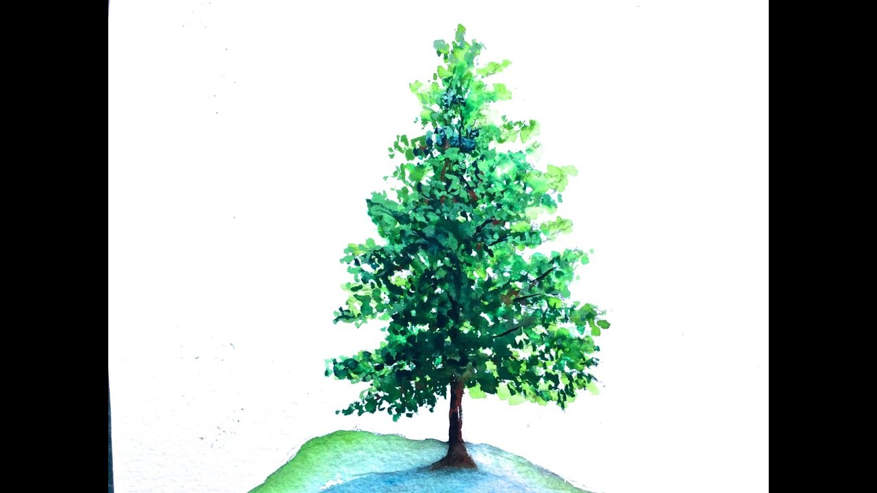 Pine Tree Watercolor Tutorial For Beginners How To Paint Step By Lesson