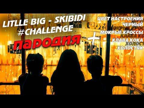 Little big – skibidi \ мокрые кроссы \ цвет настроения черный \ лсп холостяк \ клава кока (пародия)