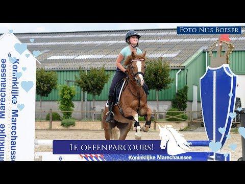 Tes en Bell springen hun eerste oefen parcours! * Hart voor Paarden *