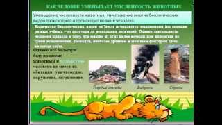Охрана животного мира