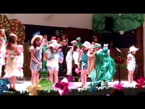 Endeavour Life Cycle Play 2nd Grade Play 2017
