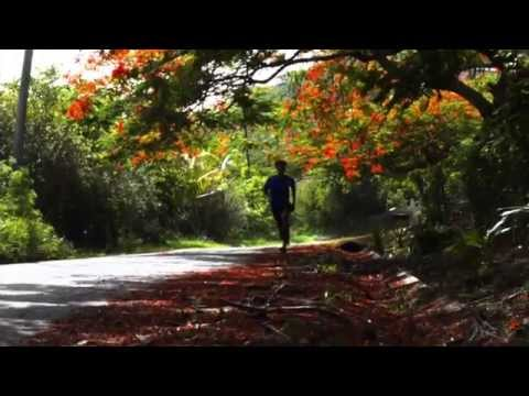 """Moringa Lion Profiles 1: """"Moringa Lionage"""" feat. Senuah Benjamin"""