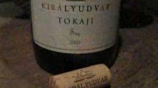 "Tokaj March 2007: ""A Companion for the Bibulous Traveller"""