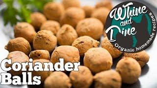 Coriander Balls   Homemade Dog Training Biscuits