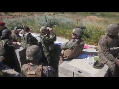 NATO Allies Fire Support during Platinum Lion