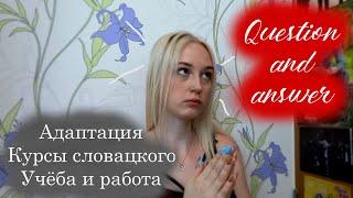Вопрос-Ответ О Словакии. Адаптация, Страховка, Курсы словацкого