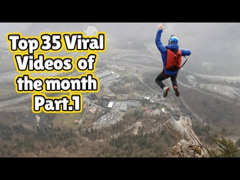 The Best Viral Videos Of The Month - May 2020 (Part 1)