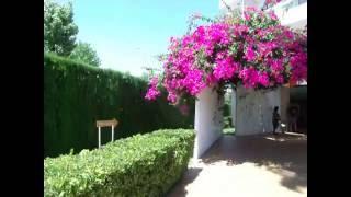 2017 Hotel Haiti, Ca'n Picafort, Majorca. 1 of 3 The Entrance, Reception & Pool Area