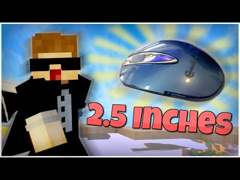 using-the-smallest-mouse-in-the-world-in-bedwars
