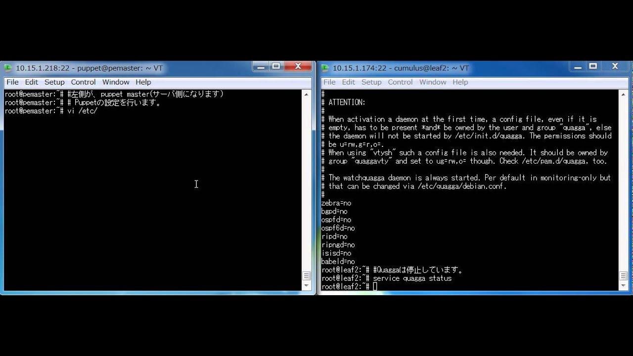 puppet cumulus OSPF demo