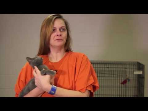 Jail Dogs & Cats of Gwinnett County Jail - Operation Second Chance